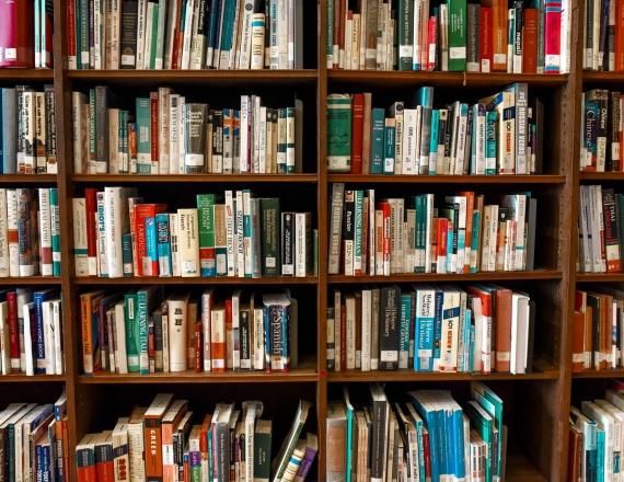 Nuotraukoje didelė knygų lentyna pilna įvairiausių knygų.